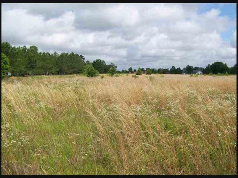 15.57 Acre Recreational Tract : Eastman : Dodge County : Georgia
