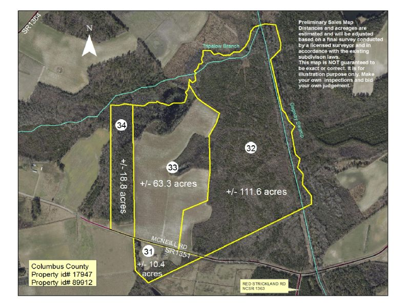 204 Ag/timber Acreage- Columbus Cty : Fair Bluff : Columbus County : North Carolina