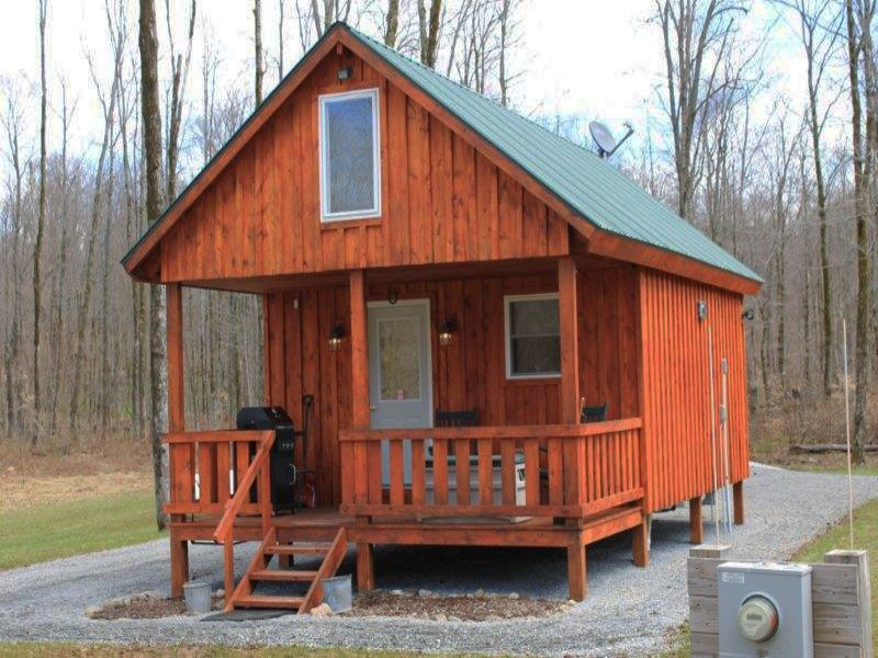 59+ Acres - Immaculate Cabin : Lewis : Lewis County : New York