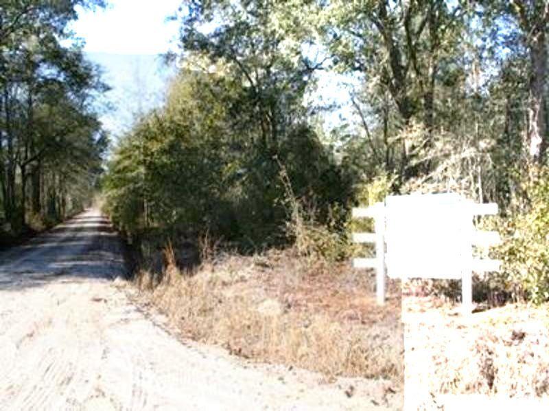Nice Recreational Tract, 94 Acres : Millwood : Ware County : Georgia