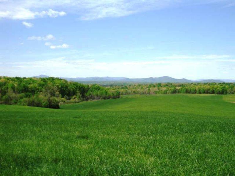 Premier Farm Auction : Moneta : Bedford County : Virginia
