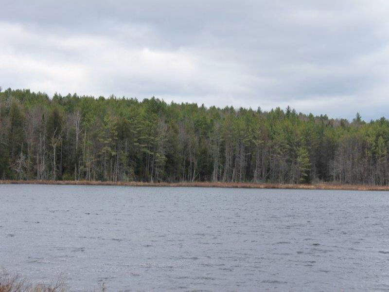 57 Adirondack Acres W/ Private Pond : Chester : Warren County : New York