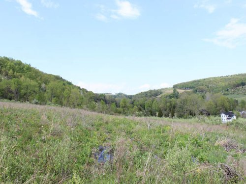 45 +/- Acres Of Land : Orangeville : Columbia County : Pennsylvania