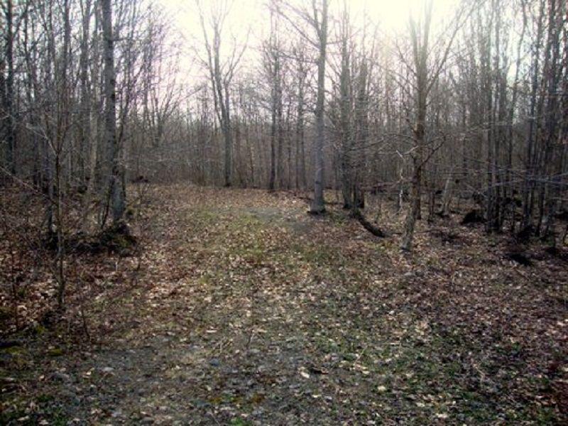 5 Acres Tug Hill Recreation : Annsville : Oneida County : New York