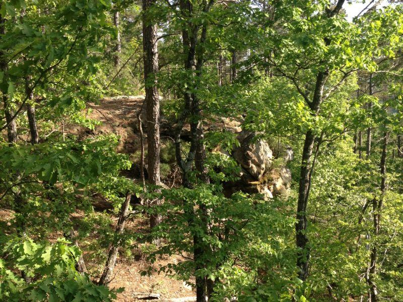 40 Acres Oxley : Oxley : Van Buren County : Arkansas