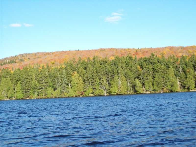 431 Acres In Upper Enchanted : Upper Enchanted Twp : Somerset County : Maine