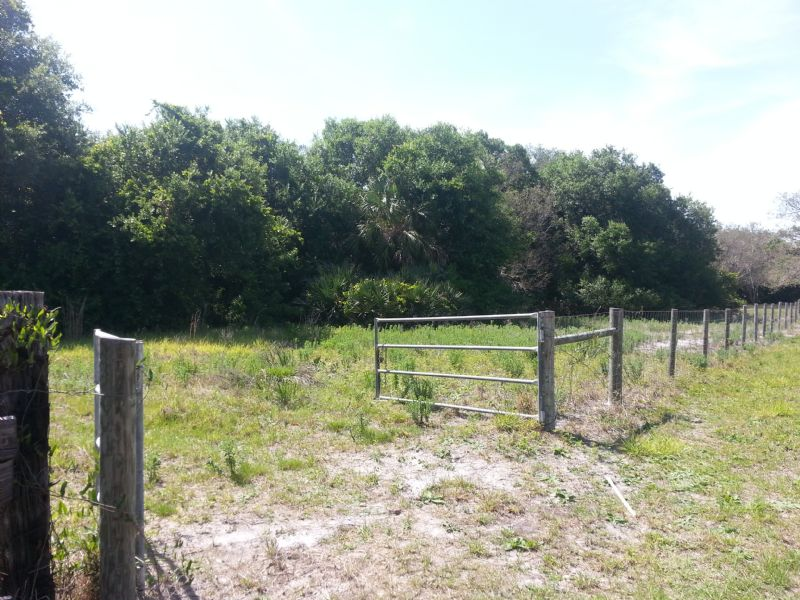 Buffer Preserve Sportsmans Paradise : Micco : Brevard County : Florida