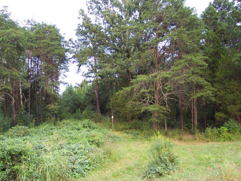 47 Acres : White : Bartow County : Georgia