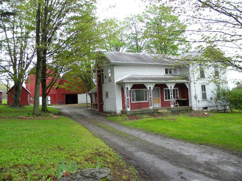 Unique Organic Farm : Greenwood : Steuben County : New York