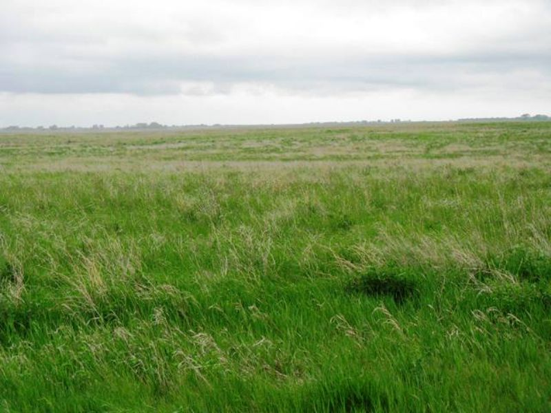 Hunting Or Farmland, Affordable : Eureka : McPherson County : South Dakota