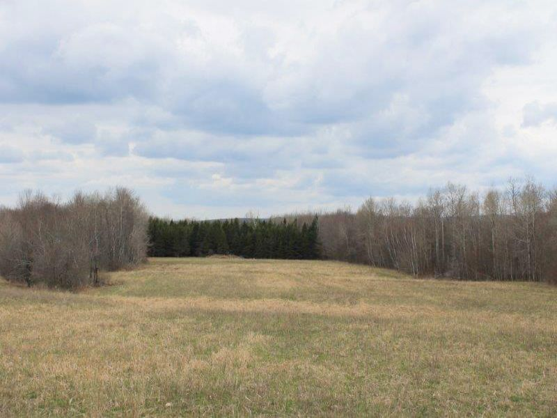 50 Acres Adirondack Hills Views : Schuyler : Herkimer County : New York