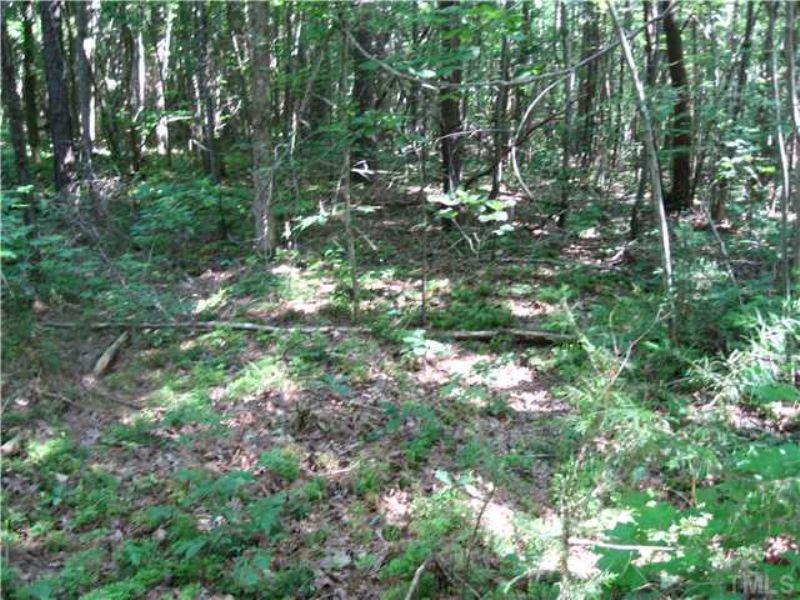 Incredible 100 + Wooded Acres : Siler City : Chatham County : North Carolina