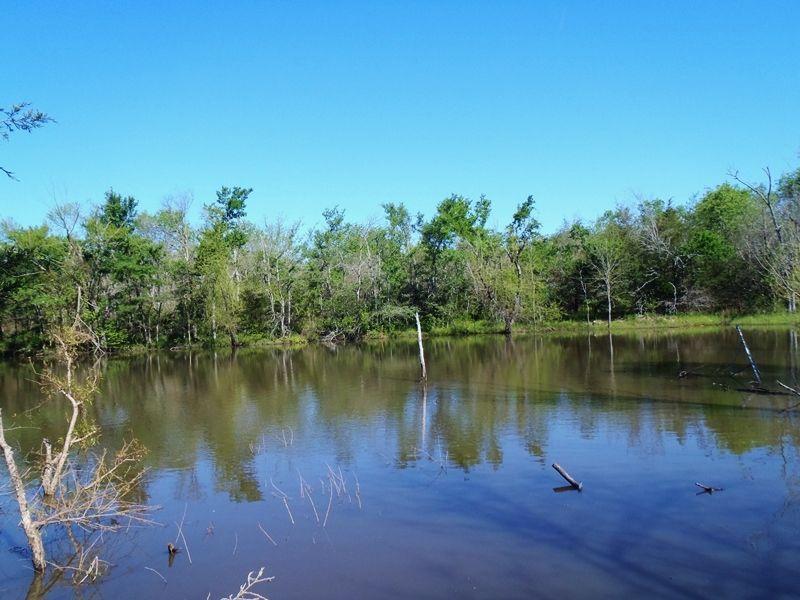 Post Oak Lot 2 : Rattan : Pushmataha County : Oklahoma