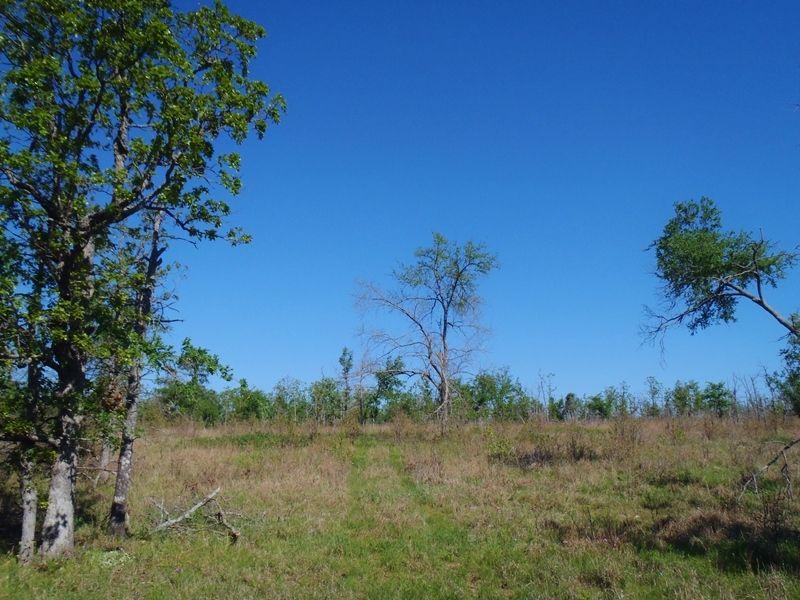 Post Oak Ridge : Rattan : Pushmataha County : Oklahoma