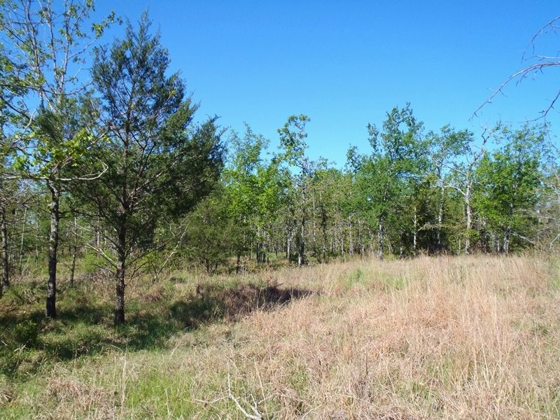 Post Oak Ridge Lot 4 : Rattan : Pushmataha County : Oklahoma