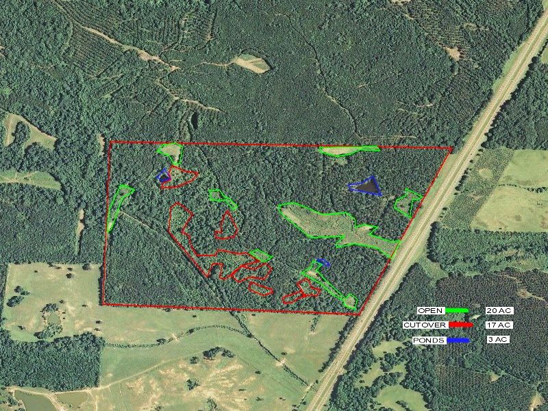Goodman 222 acres : Goodman : Holmes County : Mississippi