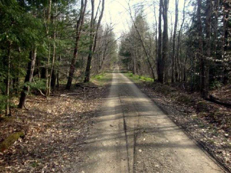5+ Acres Surrounded By State Forest : Annsville : Oneida County : New York