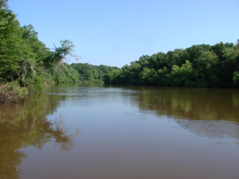 Beautiful Flint River Retreat : Americus : Sumter County : Georgia