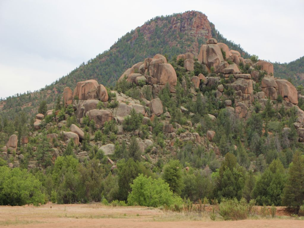 Payson Arizona Ranch Estate : Payson : Gila County : Arizona