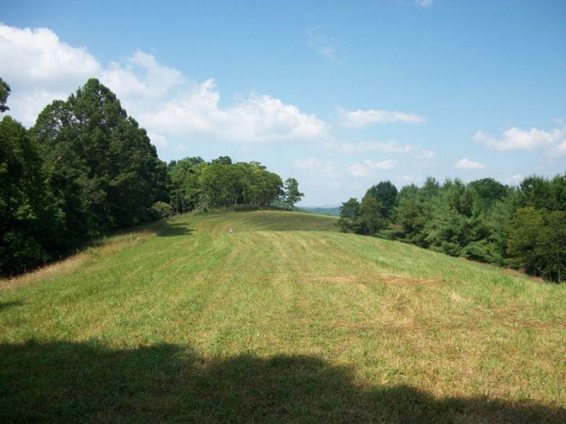 Super Mountain Homesite W/views : Troutdale : Grayson County : Virginia