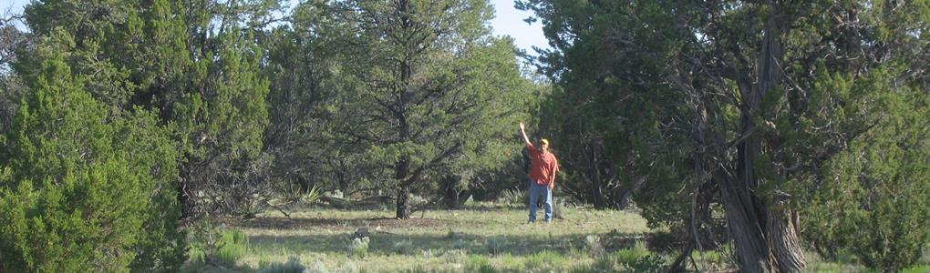Self Sufficiency Wilderness Ranch : Saint Johns : Apache County : Arizona
