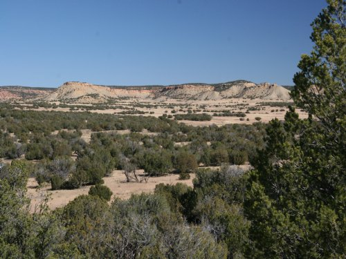 Sierra Mountain Ranch : St. Johns : Apache County : Arizona