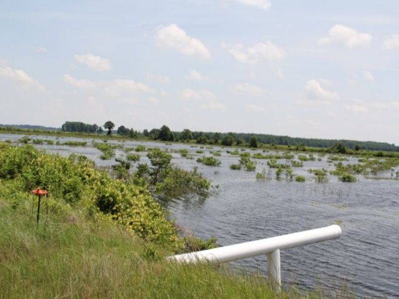 *sold*1474 Acre Farm : Lonoke : Lonoke County : Arkansas