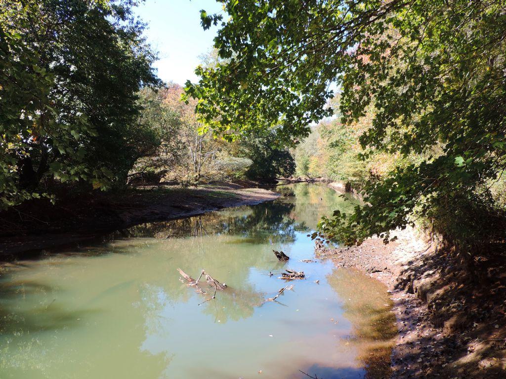 New River Tract : Cooksville : Heard County : Georgia