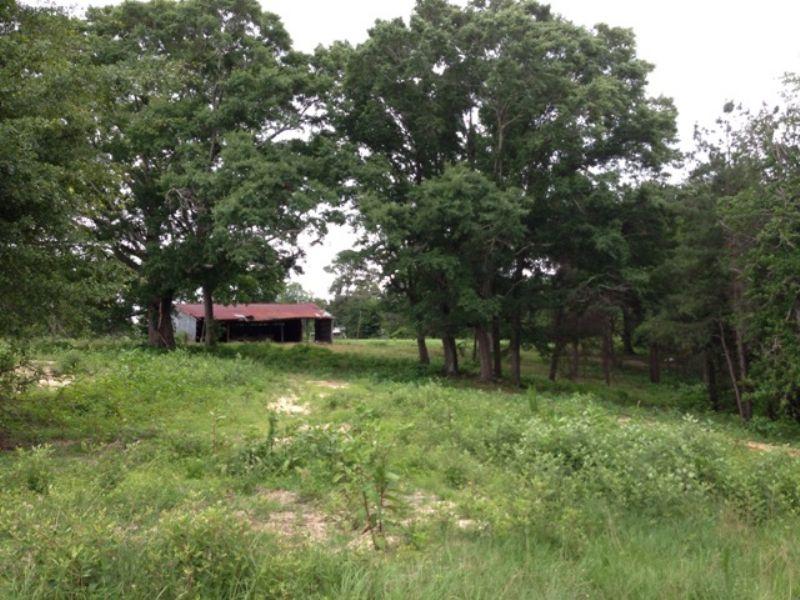 15 +/- Ac With 2 Ponds : Troy : Pike County : Alabama