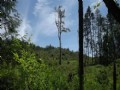 Enjoy Views Of Tenino & The Valley