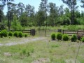 Epps Gate Tract