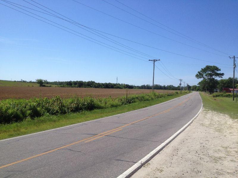 Farm On Hwy. 74 Near Maxton : Maxton : Robeson County : North Carolina