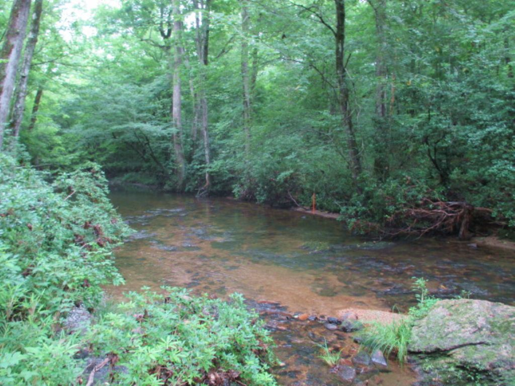 47 Ac Entirely Wooded, Stamp Creek : White : Bartow County : Georgia