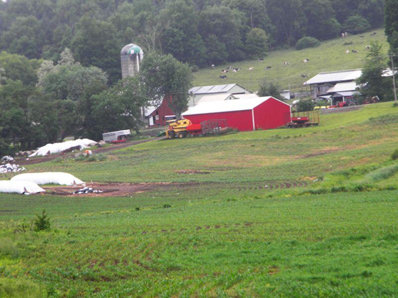 154 Acres Operating Dairy Farm : Solon : Cortland County : New York
