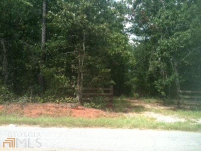 Wooded Acreage For Your Dream Home : Social Circle : Walton County : Georgia