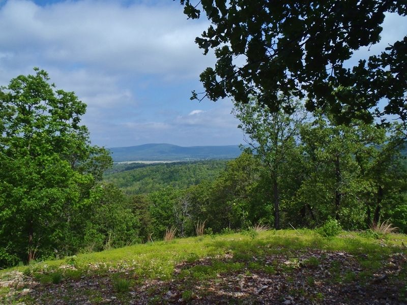 Mountain Overlook Cabin : Clayton : Pushmataha County : Oklahoma