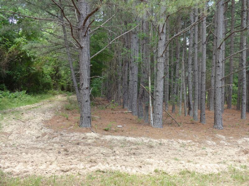 480 Acre - Padgett Creek Reserve - : Union : Union County : South Carolina