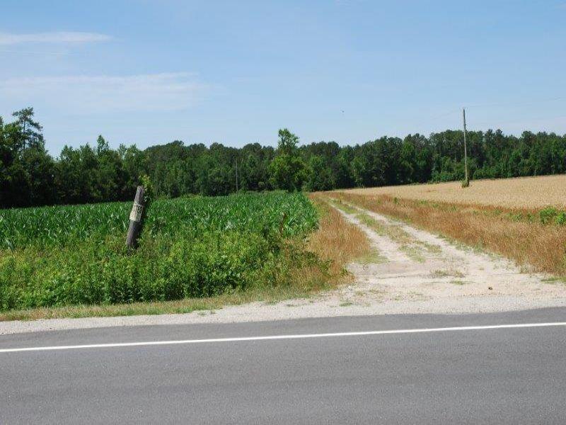 Nice Farm North Of Lumberton : Lumberton : Robeson County : North Carolina