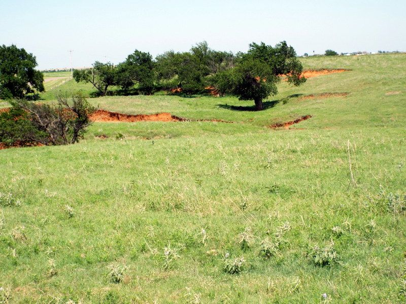 160 Acres- Ponds- Cattle Farm- Crop : Piedmont : Canadian County : Oklahoma