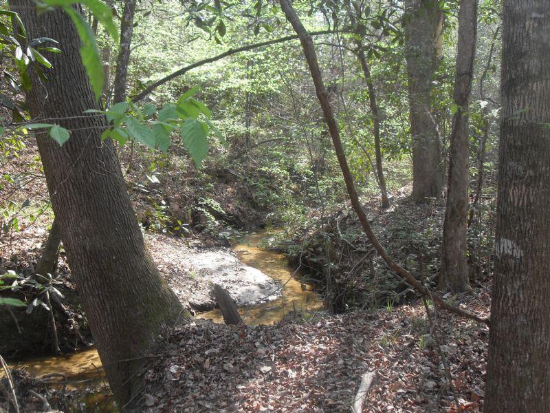 93 Acres On Caney Branch : Coleman : Randolph County : Georgia