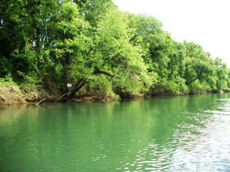 79 +/- Acres On The River : Pangburn : Cleburne County : Arkansas