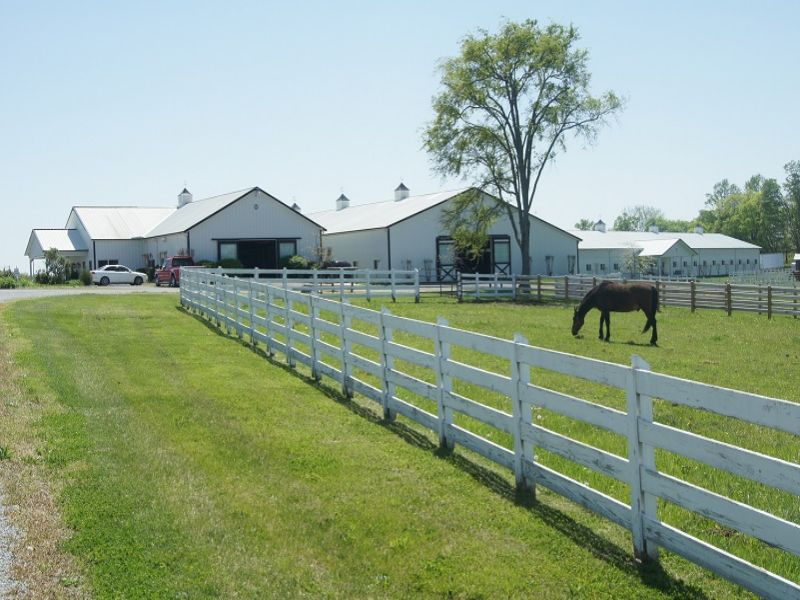 Idyllic Farm - Central To Nashville : Bell Buckle : Bedford County : Tennessee