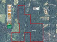 430 Acres Hunting Land