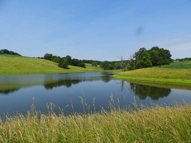 502 Acres, Beautiful Hunting Farm : Nebo : Pike County : Illinois