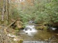 Water Fall 100 Acres Forest Service : Marble : Cherokee County : North Carolina
