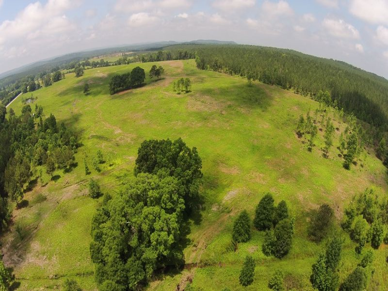 190 Acres Antioch Rd : Cedartown : Polk County : Georgia