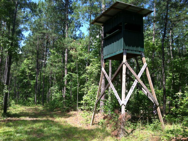 Deer, Ducks And Turkey : Milledgeville : Baldwin County : Georgia