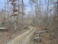 67 Acres,  Woods. Road Frontage