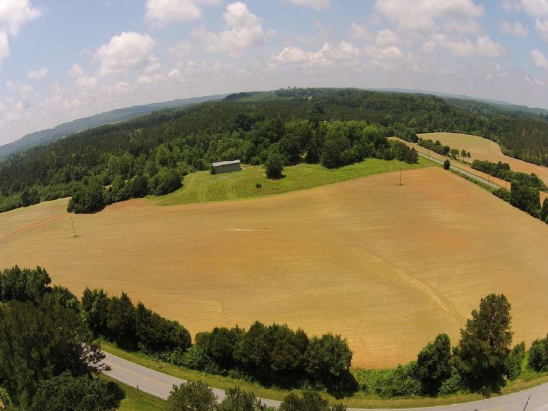 Fertile Bottom Land : Cedartown : Polk County : Georgia
