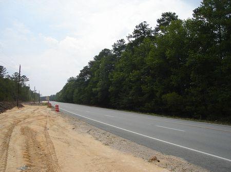 Sutlive Tract : Richmond Hill : Liberty County : Georgia